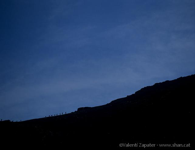 Montañeros llegando al Coll de Noufonts